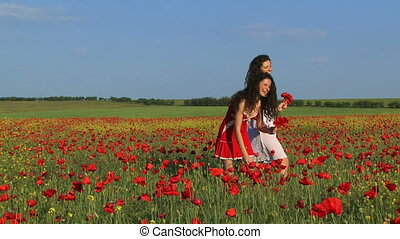 Bouquets of poppy flowers - Two women picking poppies for...