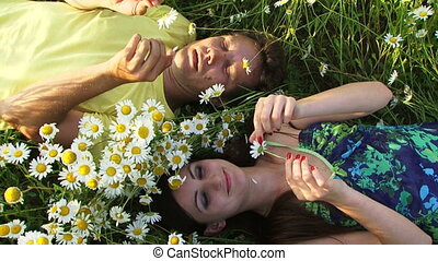 Couple among chamomiles - Couple laying in a field among...