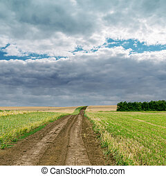 rural road in green field under cloudy sky