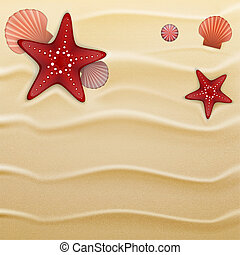 Seashells on sand, background - Starfishes, sea urchin...