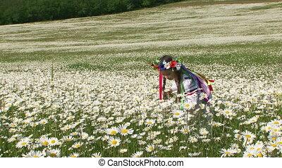 Among blossoming daisies