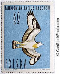 Stamp with Osprey - Polish postage stamp with osprey Pandion...