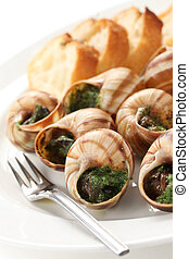 escargot, snails a la bourguignonne - snails with parsley...
