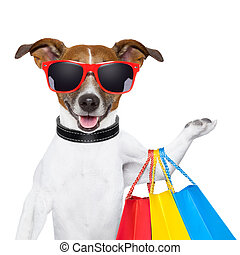 fitness dog  - funny  dog with shopping bags and glasses