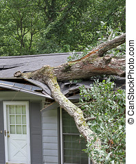 Tree On Roof - A large white oak tree falls on a house...