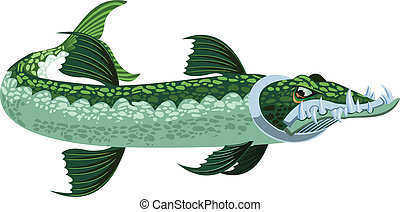 Barracuda - a cartoony/stylized looking greenish barracuda...