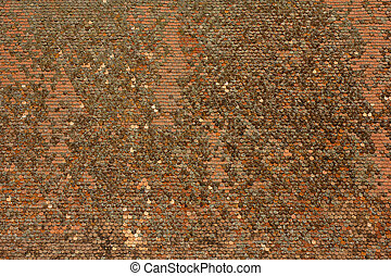 Shingle abstract background