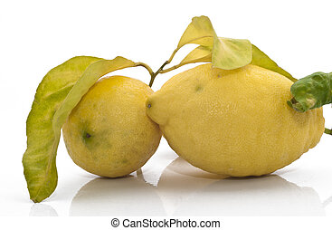yellow sicilian fresh lemons isolated on a white background