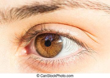 Girl Hazel Eye - Macro Photo Of A Girl Hazel Left Eye