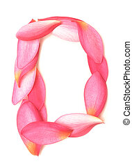 letter D made from beauty flower petals on white