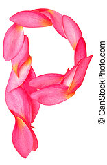 letter P made from beauty flower petals on white
