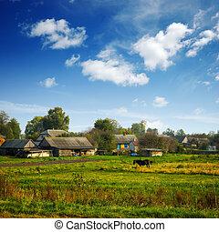 granja, caballo, campo