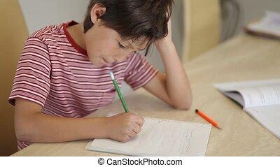 Boy studying homework - A young boy works on homework -...