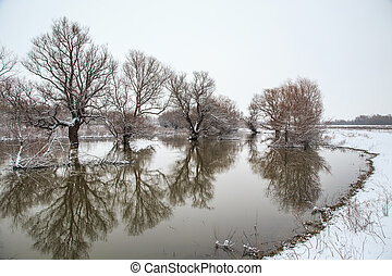 Winter landscape river Zagyva in Hungary