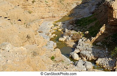 Wadi Qelt or Nahal Prat creek in Judean Desert near Jericho...