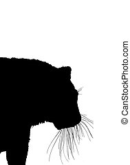 silhouette of tiger isolated on a white background - the...