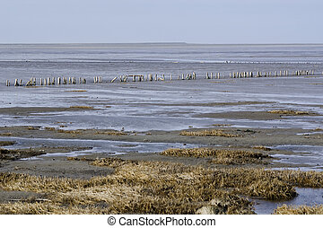 Wadden Sea, the intertidal zone in the southeastern part of...