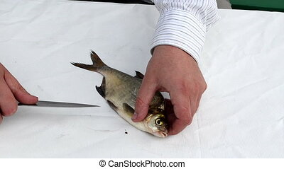 fisherman hand with white shirt cut