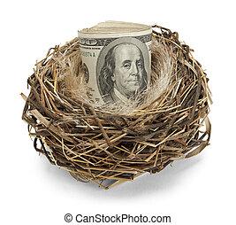 Nest Egg - Retirement nest egg of cash in a nest isolated on...