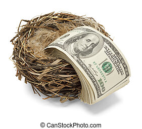 Retirement Spending - Money leaving the nest as if losing...