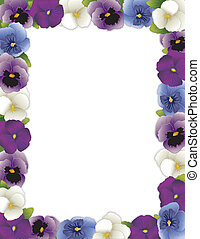 Pansy Flower Frame - Pansy flower frame, spring Violas in...
