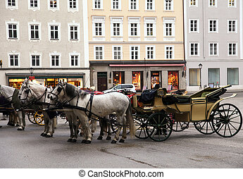 Salzburg Carriage Horses - Carriage horses waiting for...