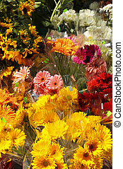 Flowers for sale - Bouquets of colorful flowers for sale at...