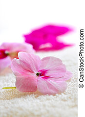 Gentle flower on luxury towel