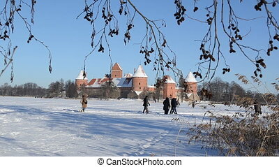 people twig castle winter