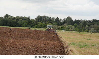 tractor plow field stork - agricultural tractor plow field...