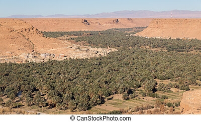 Oasis in the desert - Wide angle of cultivated fields and...