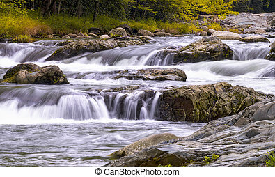 Roaring Fork in the Smokies - Cascading white water in at...