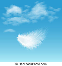 Feather - Illustration of white fluffy feather on background...
