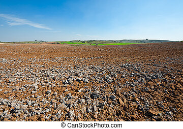 Holy Land - Poor Stony Soil after the Harvest in Israel