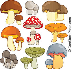 Mushroom theme collection 1 - vector illustration