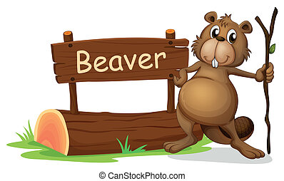 A signboard and a beaver with a stick - Illustration of a...
