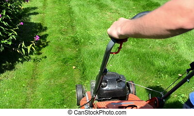 worker mow lawn cutter - worker male man with shorts and...
