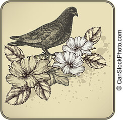 Vintage background with bird dove and blooming roses. Vector illustration.