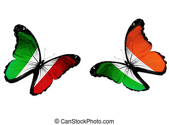Concept - two butterflies with Italian and Irish flags...