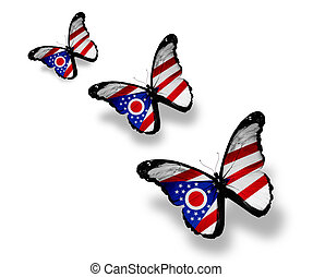 Three Ohio flag butterflies, isolated on white
