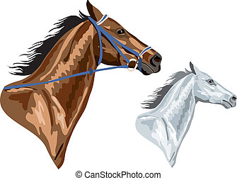 two horse heads - brown with bridle and white. in EPS...