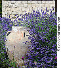 Jar against Stonewall amid Lavender - A traditional...