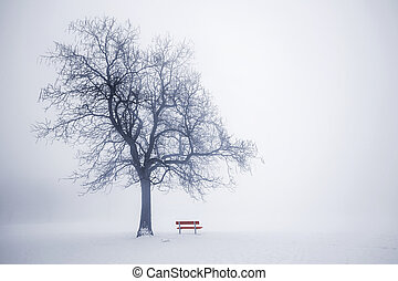 Winter tree in fog - Foggy winter scene with leafless tree...