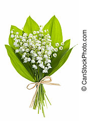 Lily-of-the-valley flowers on white - Lily of the valley...