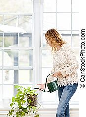 Smiling woman watering plant at home - Smiling woman...