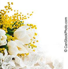 bianco, Tulips, mimosa, fondo, fiori