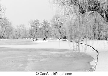 Wintry city park in Kampen, Netherlands - The Kamper City...