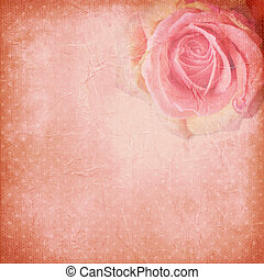 Vintage background with rose