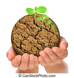 Plant growing out of parched planet in hands, evolution...