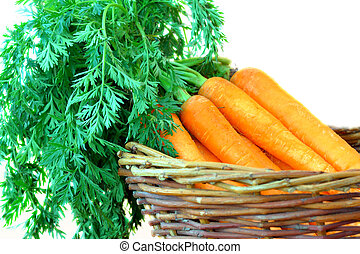 carrot - fresh organic carrots bunch in a wicker basket